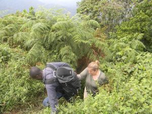 Mountain /Volcano Climbing in Mount Elgon National Park