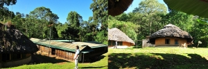 Forest Exploration Centre-elgon