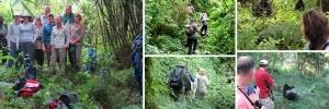 gorilla-trekking-in-mgahinga