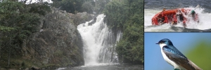 Sezibwa-falls